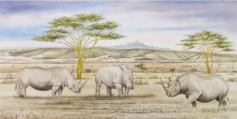 Black & White Rhinosaurus