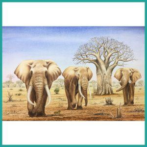 African Bush Elephant Water colour painting